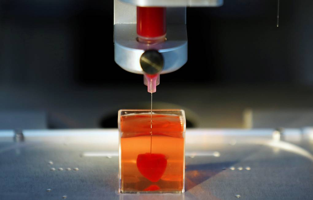 На 3D-принтере впервые напечатали настоящее живое сердце