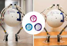 AnyWalker: робот-помощник из России