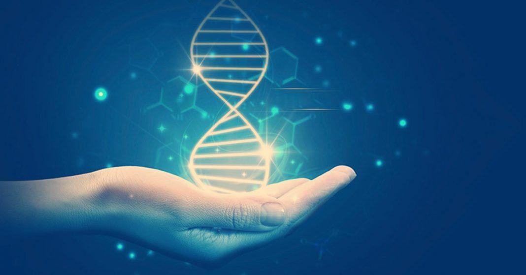 ДНК научились превращать в детали для роботов