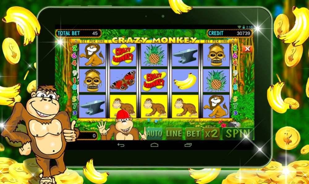 crazy monkey 1000